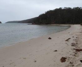 Severs Beach