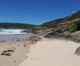 Snapper Point Beach