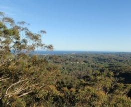 St Johns Lookout