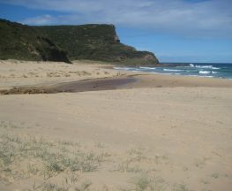 Stockyard spur to Garie Beach