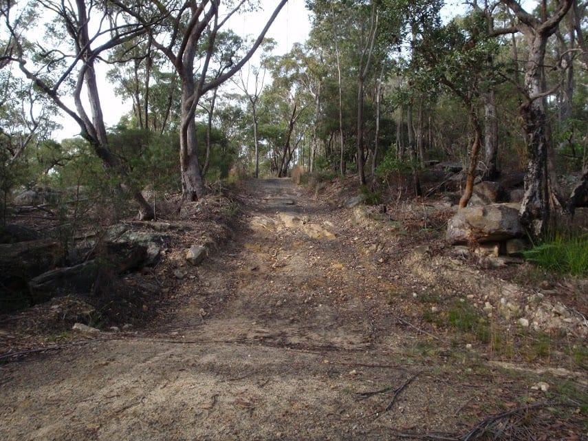 Stringybark Ridge and Zig Zag Creek loop from Thornleigh Station