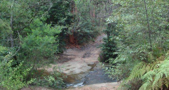 The Bare Creek Track