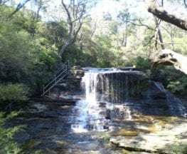 The Weeping Rock and Fletchers Lookout Tracks