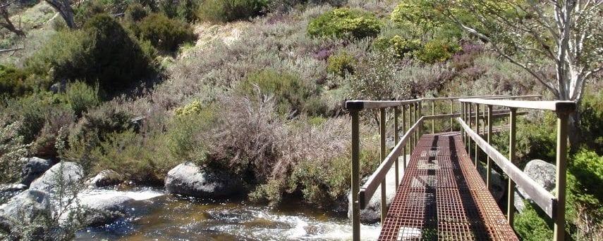 Thredbo River track