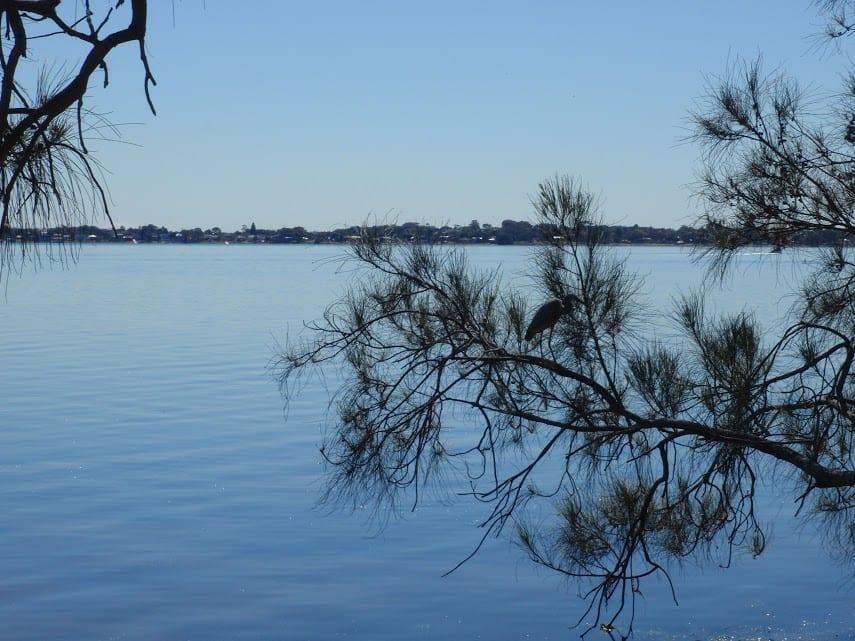 Tuggerah Lake vista and Rainforest