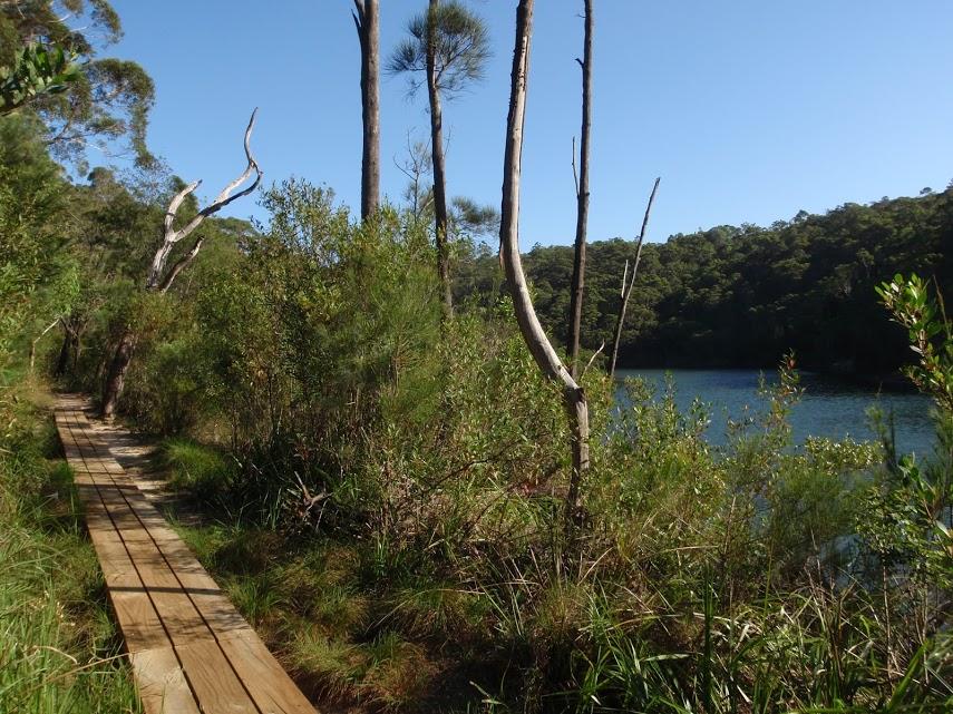 Two Creeks Track