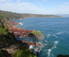 Twofold Bay Lookout via Boyd Tower