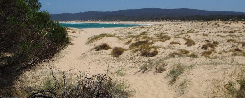 Wallagoot Beach