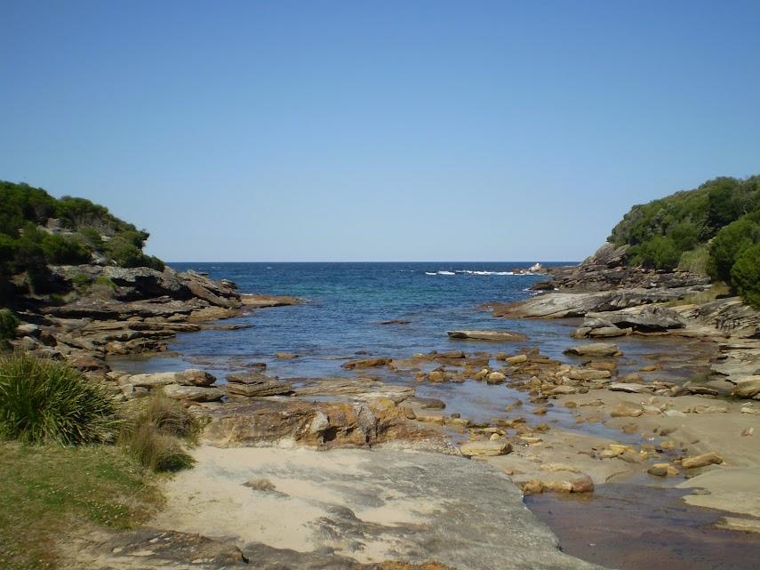 Wattamola picnic area to Curracurrang Cove
