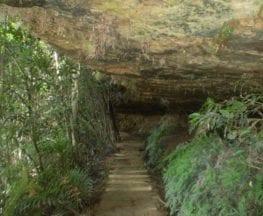 Wentworth Falls Undercliff Loop