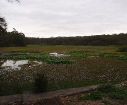 Yeramba Lagoon Loop