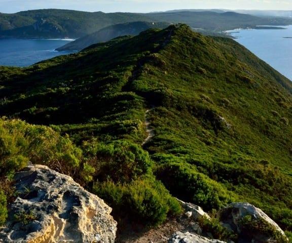 Bald Head Walk Trail