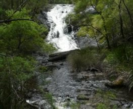 Beedelup Falls Loop Walk
