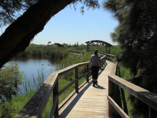Big Swamp Walk