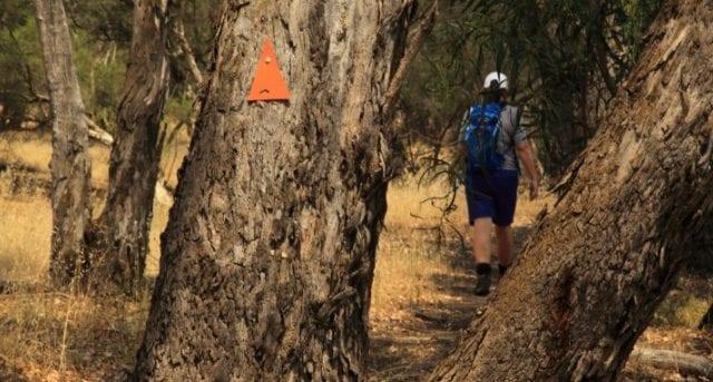 Bilya Walk Track