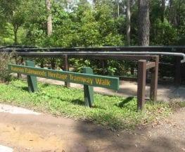 Buderim Tramway Heritage Trail