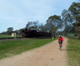 Castlemaine to Maldon Trail