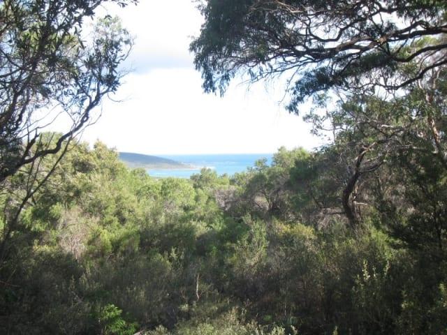 Caves Trail