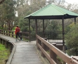 Collie River Walk