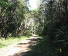 Dularcha National Park Rail Trail
