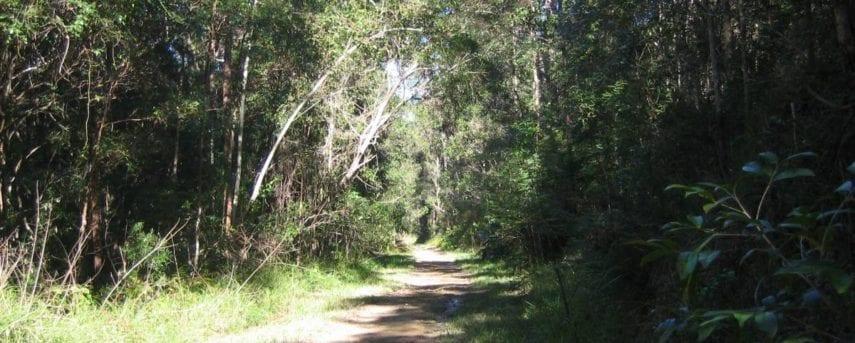 Dularcha National Park Rail Trail