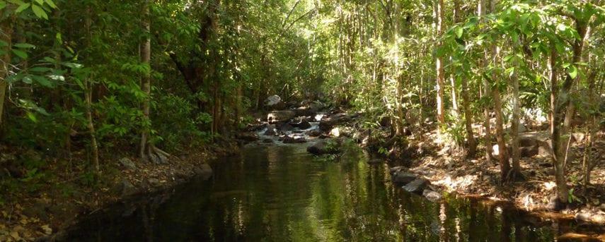 Florence Creek Walk