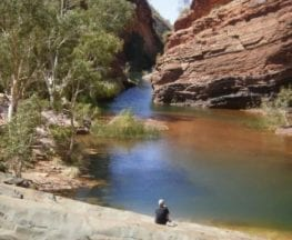 Hamersley Gorge Walk
