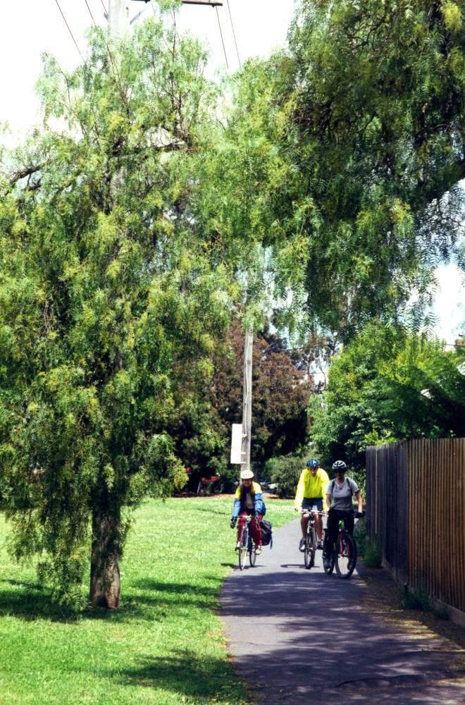 Hawthorn to Kew Rail Trail
