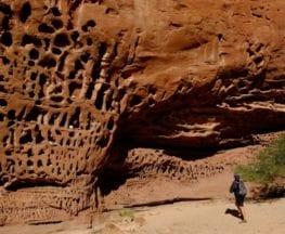 Honeycomb Gorge Trail