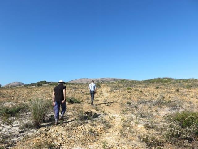 Mt Arid