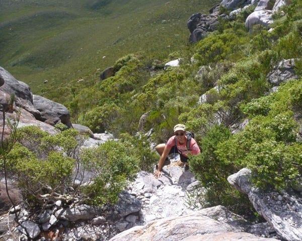 Mt Ragged Walk Trail