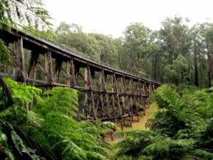 Noojee Trestle Bridge Rail Trail