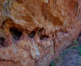 Ooramboo Trail