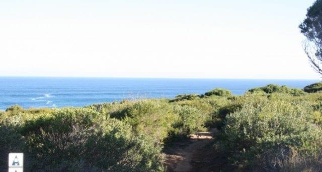 Quenda Trail