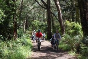 Red Hill Rail Trail