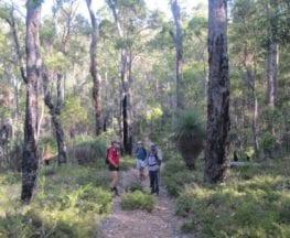 Sika Trail