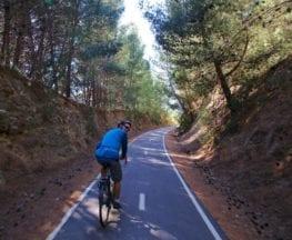 The Barossa Trail