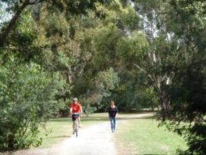 The Bunny Rail Trail