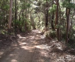 Torbay to Elleker Rail Trail