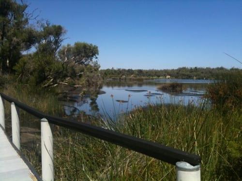 Wetlands Walk Trail