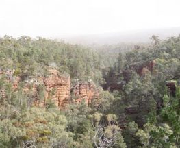 Alligator Gorge Lookout Walk