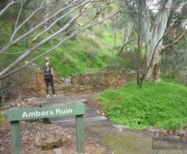 Ambers Gully and Sugarloaves Trail