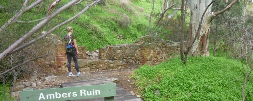 Ambers Gully and Sugarloaves Trail