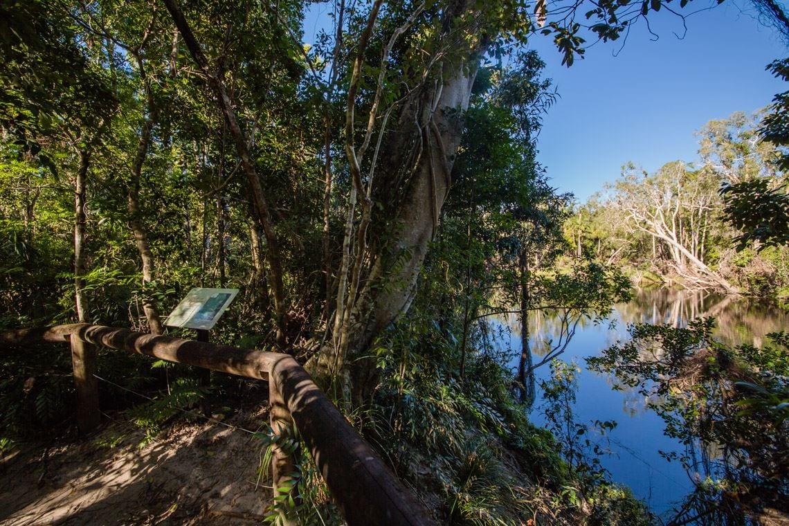 Bowenia Rainforest Circuit