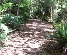 Evercreech Trail Hiking Australia