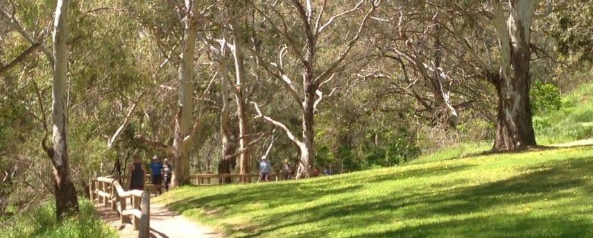 Fourth Creek Walk