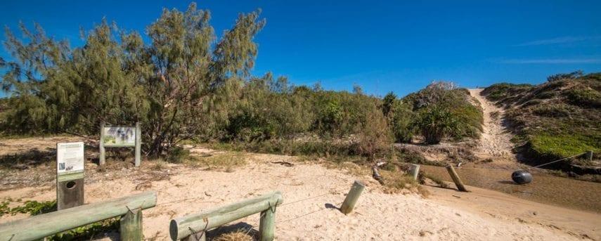 Freshwater Creek Track
