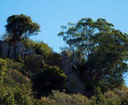 Goolman Lookout Trail