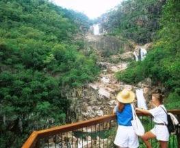 Jourama Falls Track