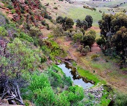 Lavender Federation Trail